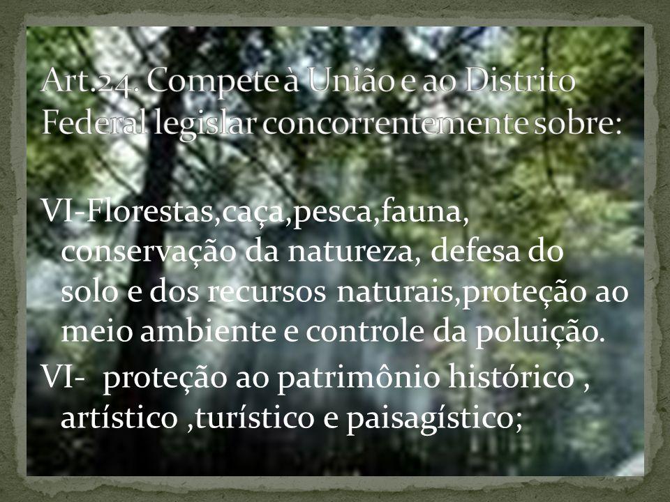 VI-Florestas,caça,pesca,fauna, conservação da natureza, defesa do solo e dos recursos naturais,proteção ao meio ambiente e controle da poluição.