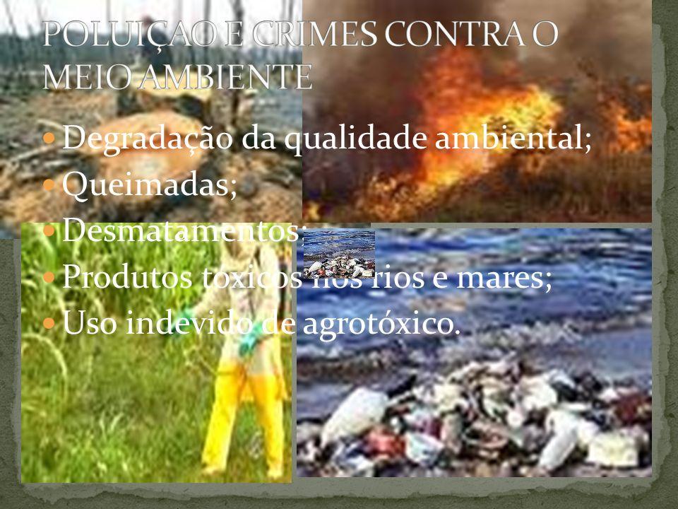 Degradação da qualidade ambiental; Queimadas; Desmatamentos; Produtos tóxicos nos rios e mares; Uso indevido de agrotóxico.