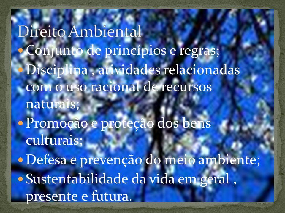 Conjunto de princípios e regras; Disciplina, atividades relacionadas com o uso racional de recursos naturais; Promoção e proteção dos bens culturais; Defesa e prevenção do meio ambiente; Sustentabilidade da vida em geral, presente e futura.