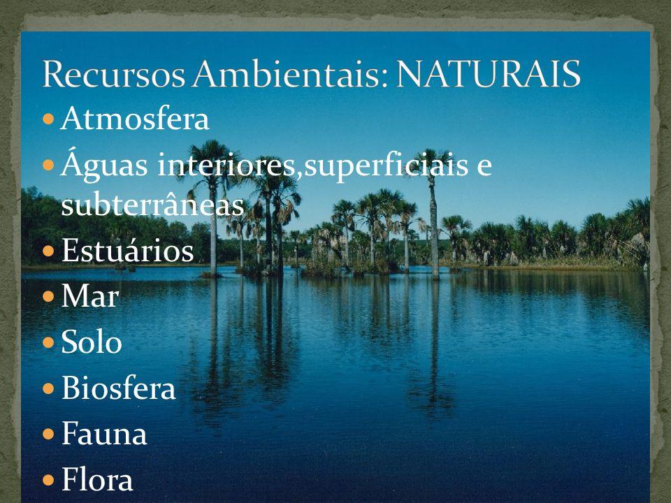 Atmosfera Águas interiores,superficiais e subterrâneas Estuários Mar Solo Biosfera Fauna Flora