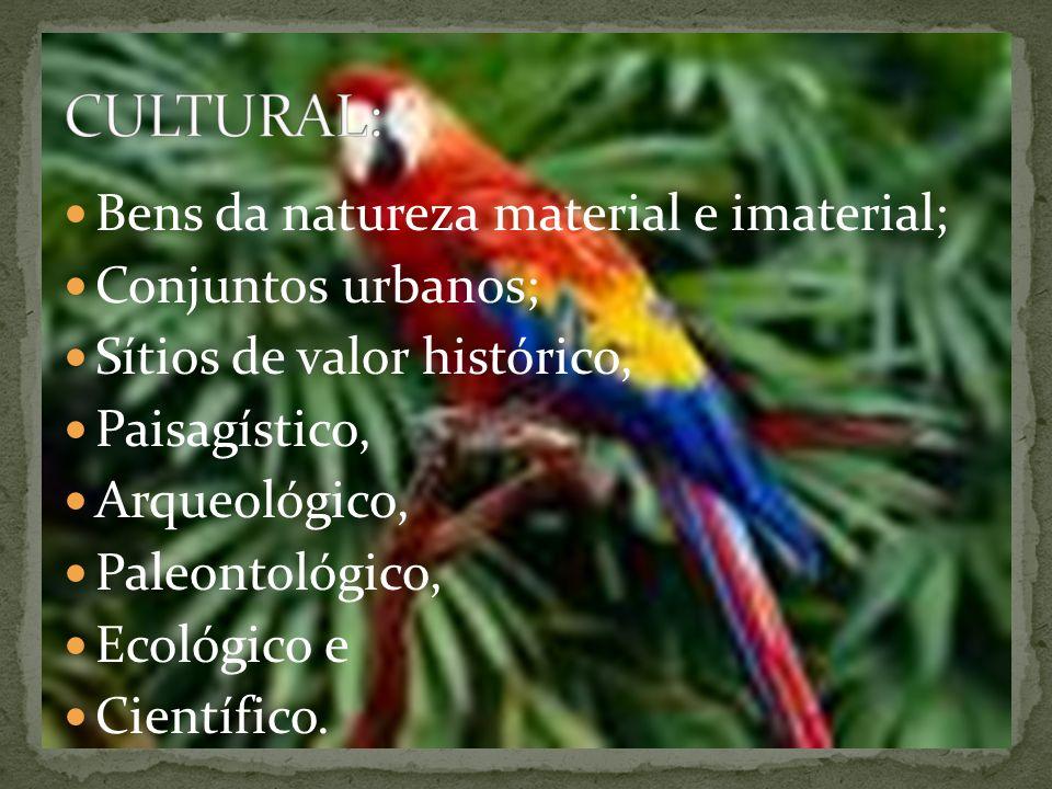 Bens da natureza material e imaterial; Conjuntos urbanos; Sítios de valor histórico, Paisagístico, Arqueológico, Paleontológico, Ecológico e Científico.