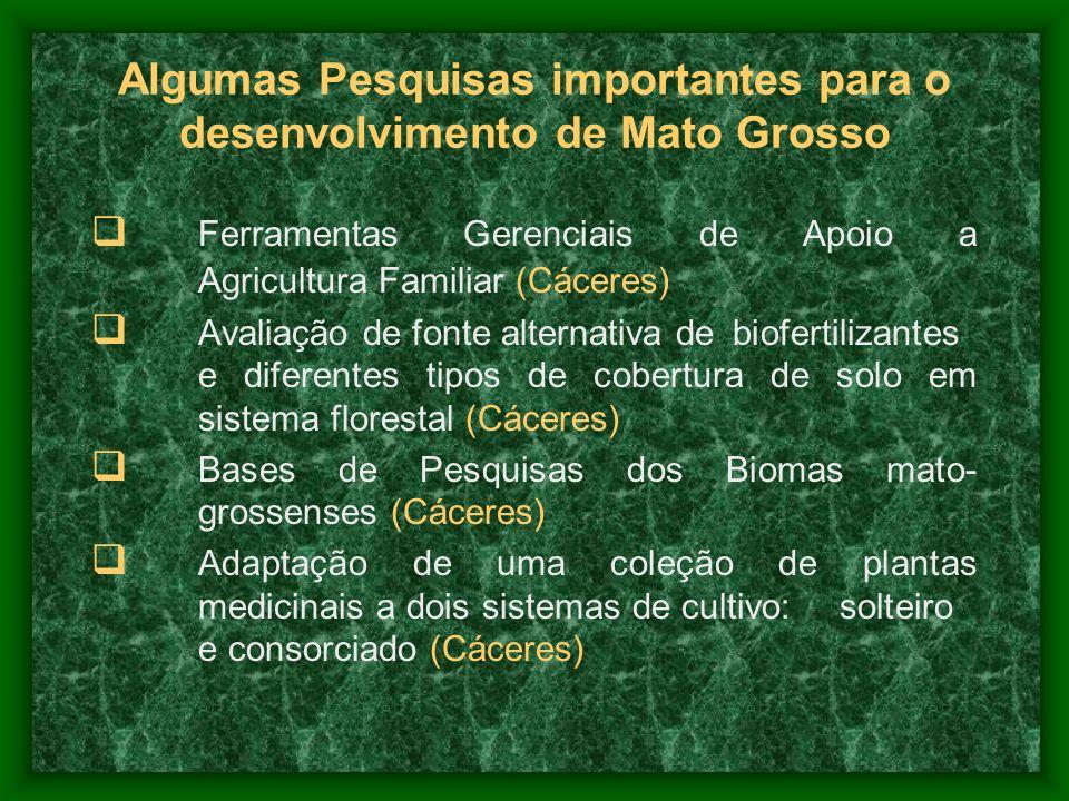 Ferramentas Gerenciais de Apoio a Agricultura Familiar (Cáceres) Avaliação de fonte alternativa de biofertilizantes e diferentes tipos de cobertura de