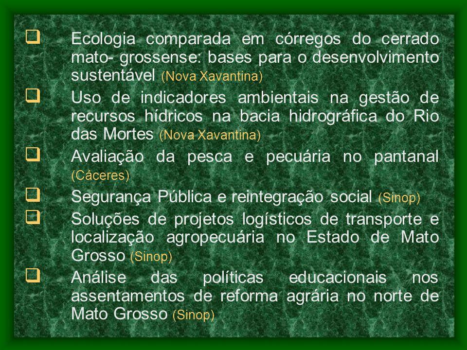 Ecologia comparada em córregos do cerrado mato- grossense: bases para o desenvolvimento sustentável (Nova Xavantina) Uso de indicadores ambientais na