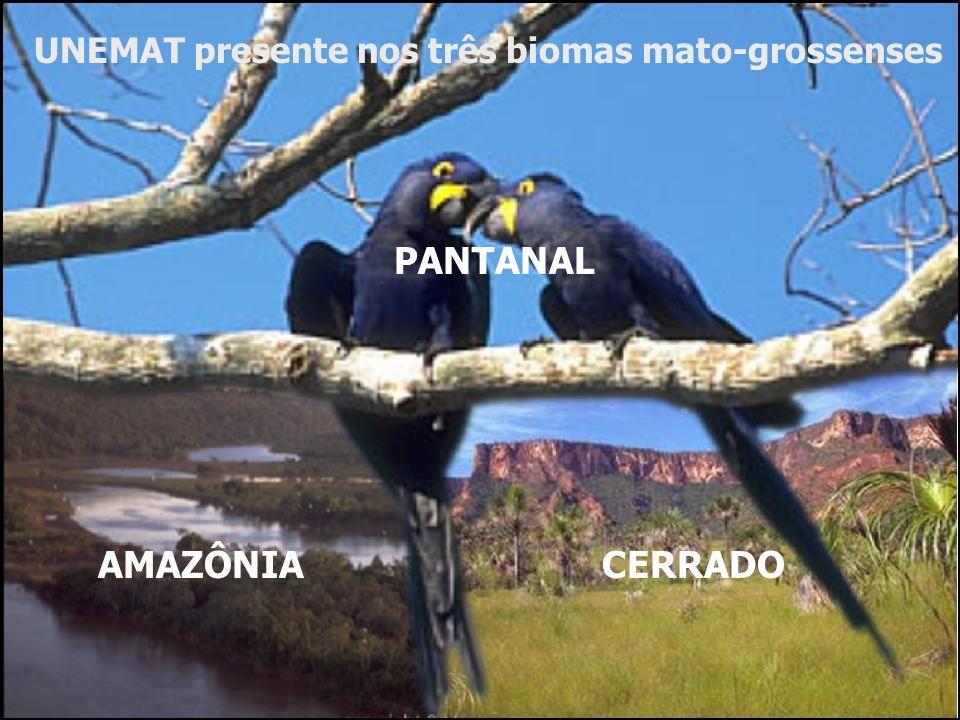 AMAZÔNIA PANTANAL CERRADO UNEMAT presente nos três biomas mato-grossenses