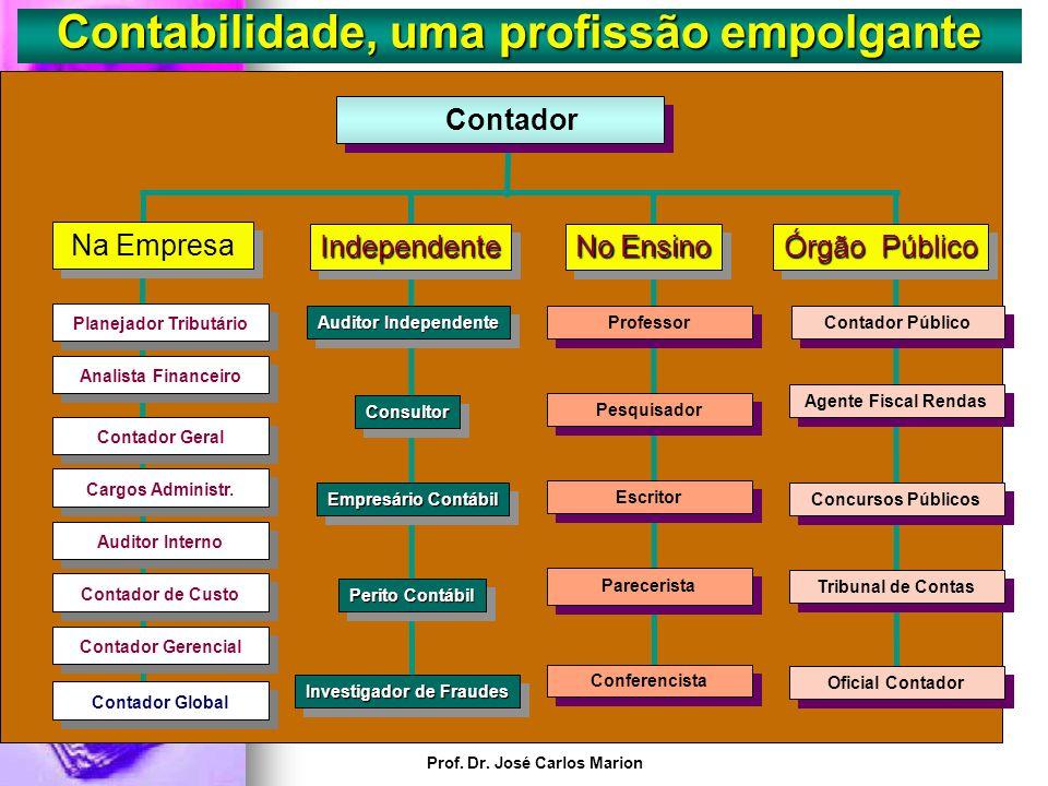 Prof. Dr. José Carlos Marion Contabilidade, uma profissão empolgante. A profissão contábil tem próximo de 30 especializações, abrindo um leque de esco