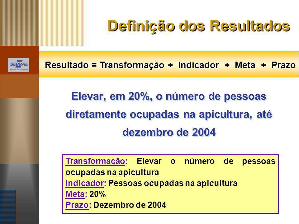 Definição dos Resultados Elevar, em 20%, o número de pessoas diretamente ocupadas na apicultura, até dezembro de 2004 Resultado = Transformação + Indi