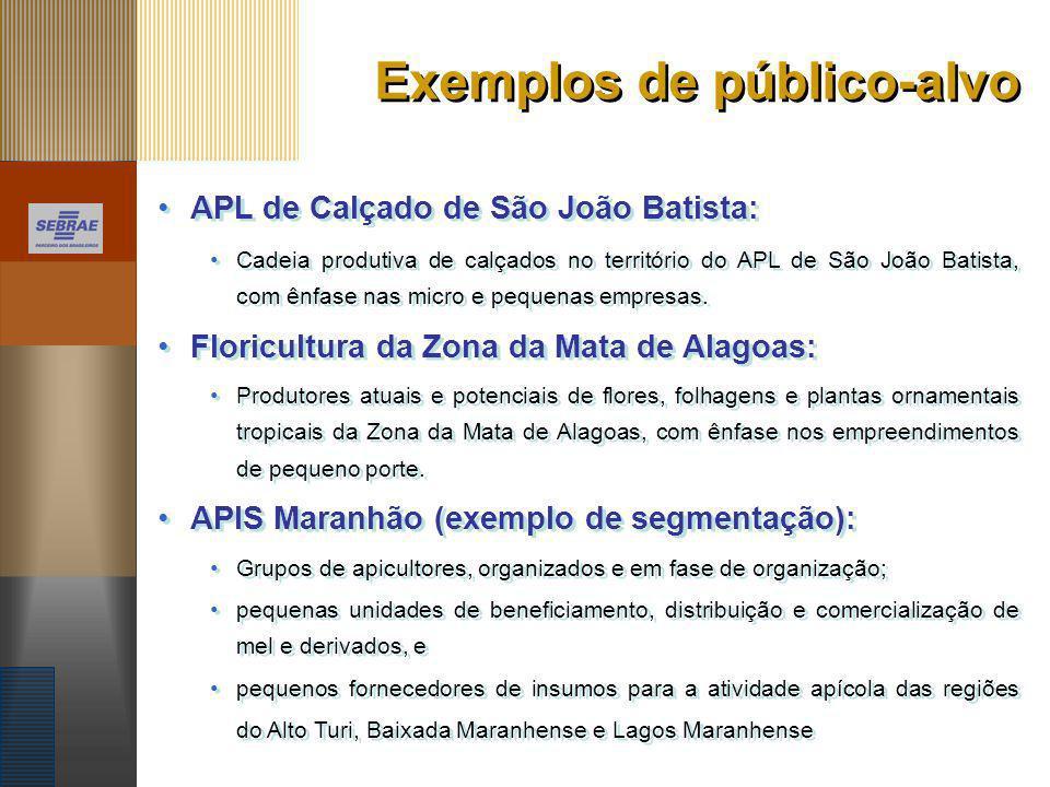 Exemplos de público-alvo APL de Calçado de São João Batista: Cadeia produtiva de calçados no território do APL de São João Batista, com ênfase nas mic