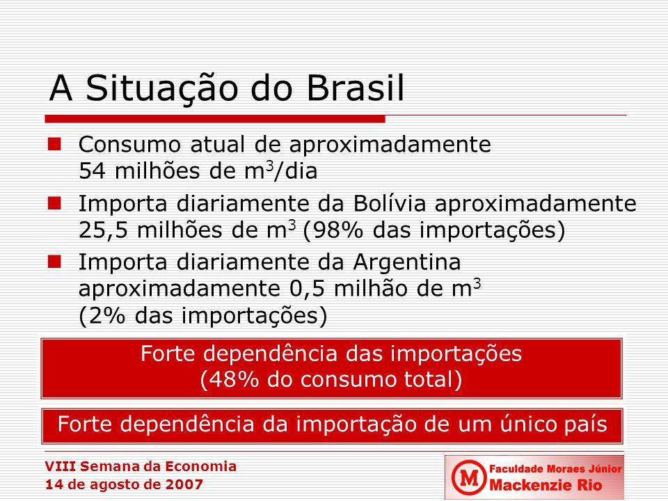 VIII Semana da Economia 14 de agosto de 2007 A Situação do Brasil Consumo atual de aproximadamente 54 milhões de m 3 /dia Importa diariamente da Bolív
