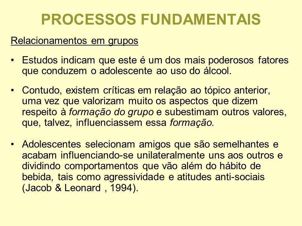 PROCESSOS FUNDAMENTAIS Relacionamentos em grupos Estudos indicam que este é um dos mais poderosos fatores que conduzem o adolescente ao uso do álcool.