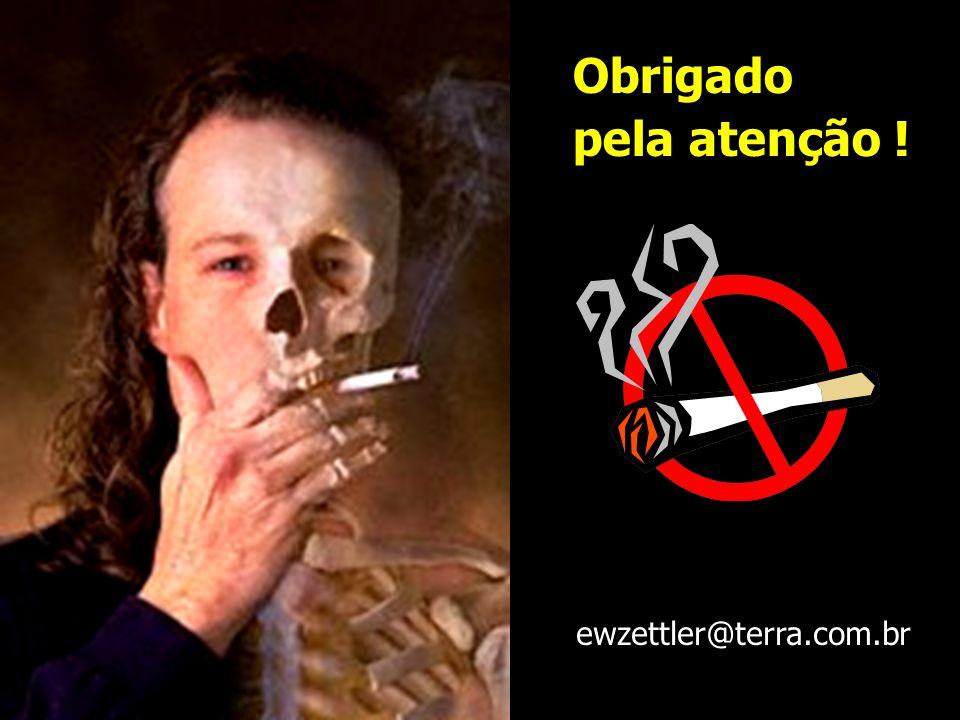 Obrigado pela atenção ! ewzettler@terra.com.br