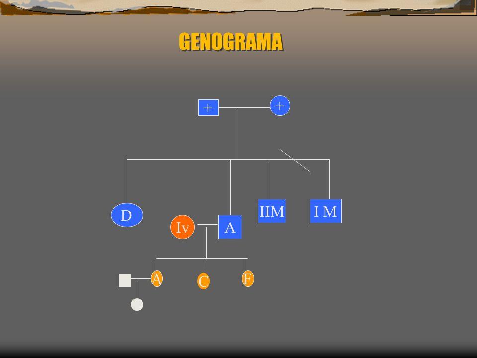 GENOGRAMA I MIIM AIv D + + F C A L