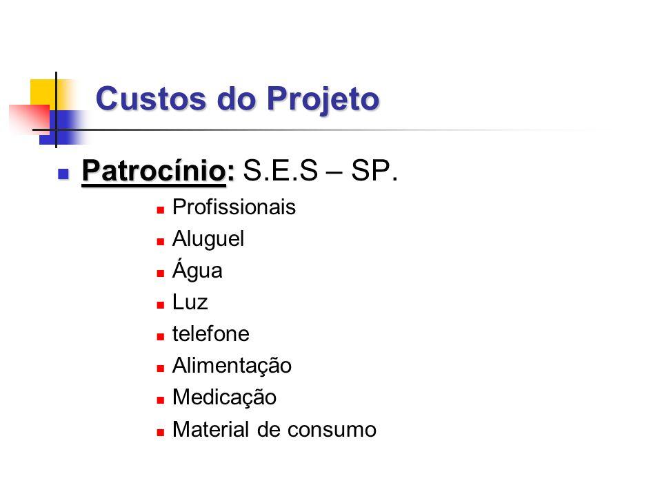 Custos do Projeto Patrocínio: Patrocínio: S.E.S – SP.