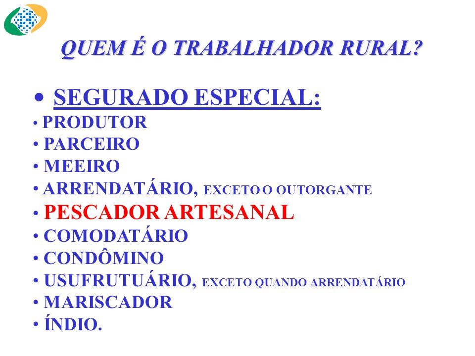 SEGURADO ESPECIAL: PRODUTOR PARCEIRO MEEIRO ARRENDATÁRIO, EXCETO O OUTORGANTE PESCADOR ARTESANAL COMODATÁRIO CONDÔMINO USUFRUTUÁRIO, EXCETO QUANDO ARR