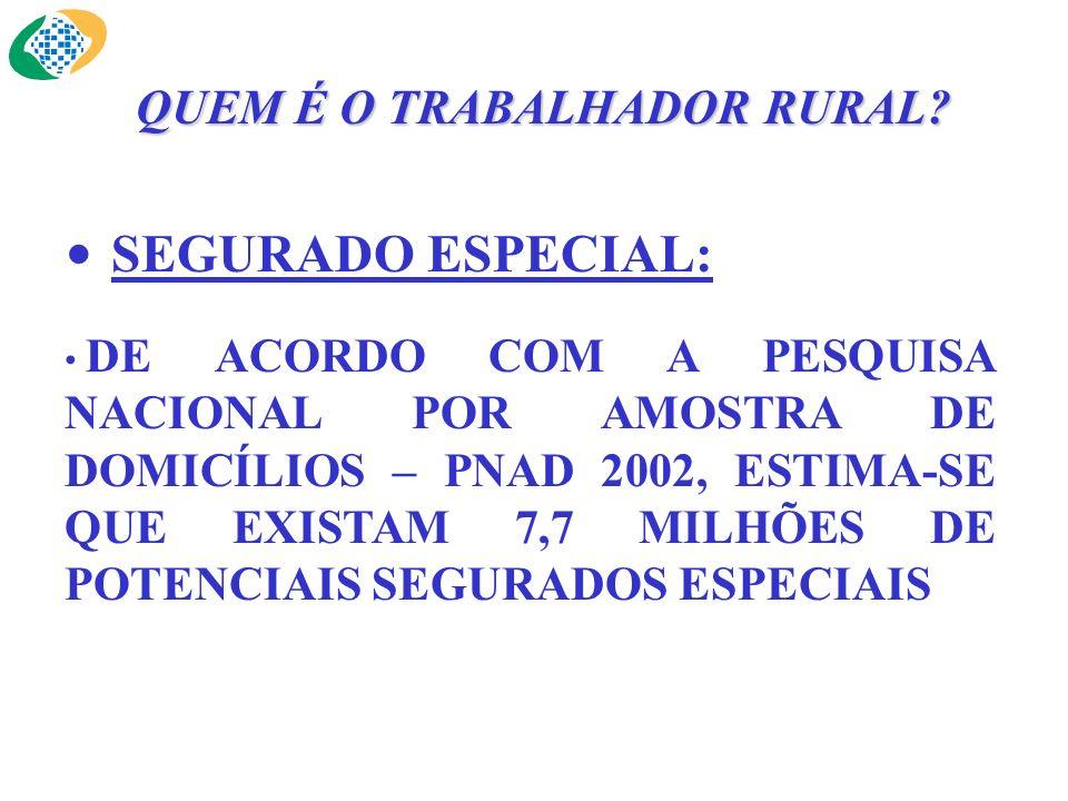 SEGURADO ESPECIAL: DE ACORDO COM A PESQUISA NACIONAL POR AMOSTRA DE DOMICÍLIOS – PNAD 2002, ESTIMA-SE QUE EXISTAM 7,7 MILHÕES DE POTENCIAIS SEGURADOS