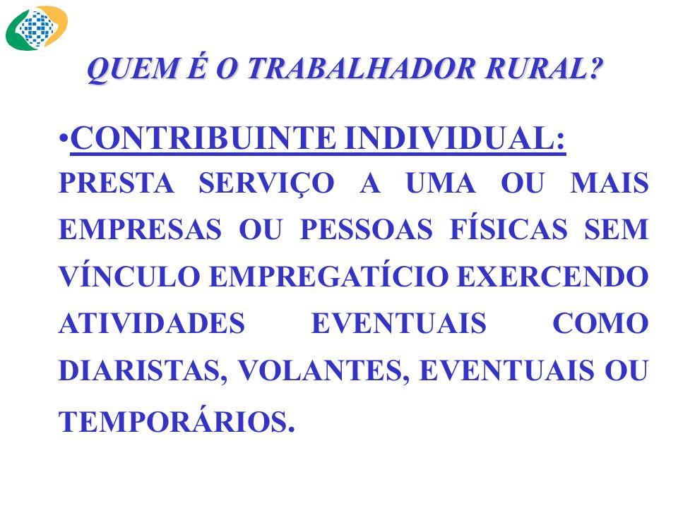 SEGURADO ESPECIAL: É AQUELE QUE EXERCE SUAS ATIVIDADES, INDIVIDUALMENTE OU REGIME DE ECONOMIA FAMILIAR, COM OU SEM AUXÍLIO EVENTUAL DE TERCEIROS, BEM COMO SEUS RESPECTIVOS CÔNJUGES OU COMPANHEIROS, E FILHOS MAIORES DE 16 ANOS, DESDE QUE TRABALHEM, COMPROVADAMENTE, COM O GRUPO FAMILIAR RESPECTIVO.
