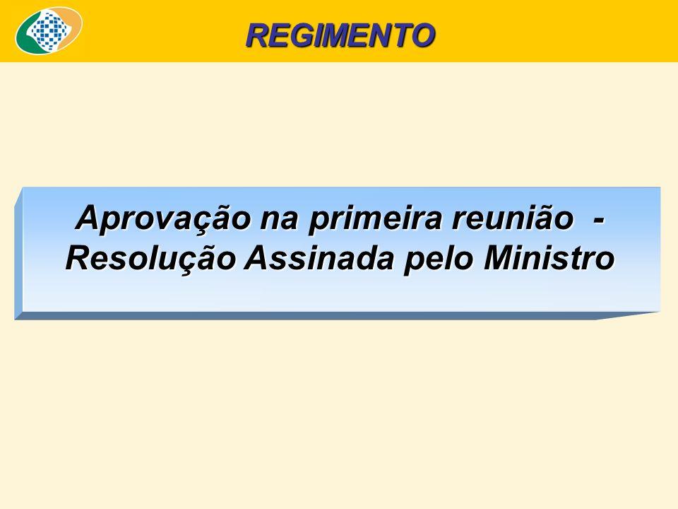 REGIMENTO Aprovação na primeira reunião - Resolução Assinada pelo Ministro