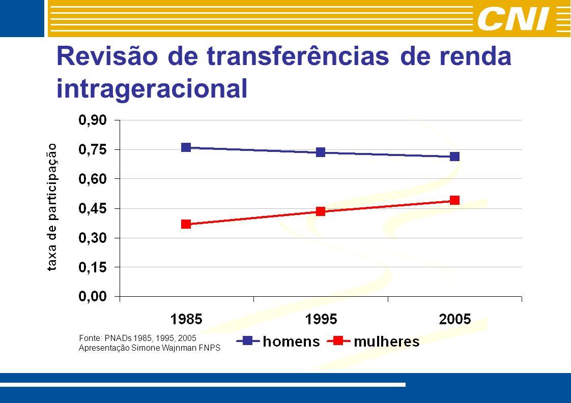 Revisão de transferências de renda intrageracional Fonte: PNADs 1985, 1995, 2005 Apresentação Simone Wajnman FNPS