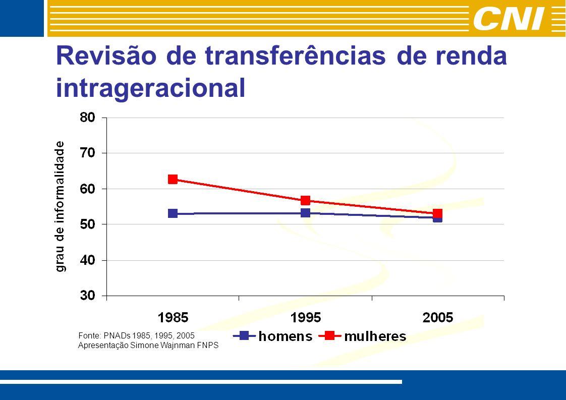 Fonte: PNADs 1985, 1995, 2005 Apresentação Simone Wajnman FNPS Revisão de transferências de renda intrageracional
