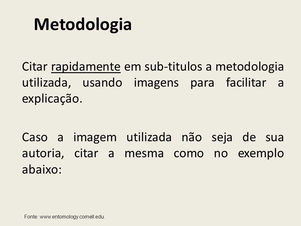 Metodologia Citar rapidamente em sub-titulos a metodologia utilizada, usando imagens para facilitar a explicação. Caso a imagem utilizada não seja de
