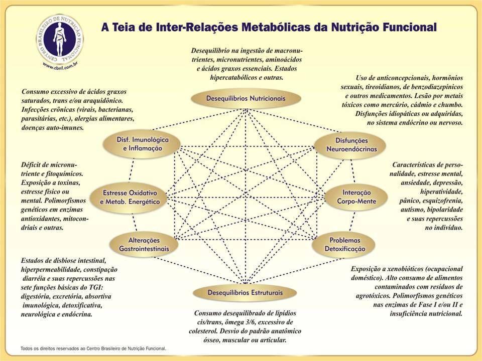 FERRAMENTAS DA NUTRIÇÃO FUNCIONAL 1.Diagnóstico de Atendimento: Anamnese Funcional: Ingestão, Digestão, Absorção, Transporte e Excreção Avaliação de sinais e sintomas clínicos de déficits e superávits nutricionais Rastreamento Metabólico Análise dos Exames Laboratoriais Questionário de Interpretação de Destoxificação Funcional