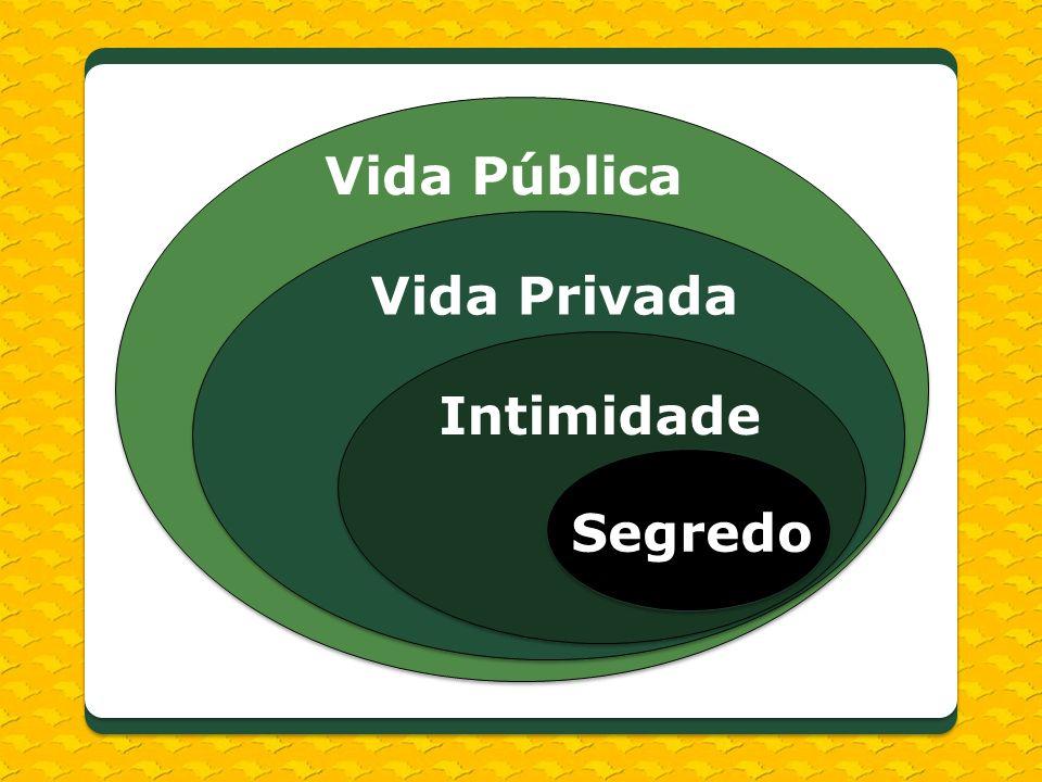 Segredo Intimidade Vida Privada Vida Pública