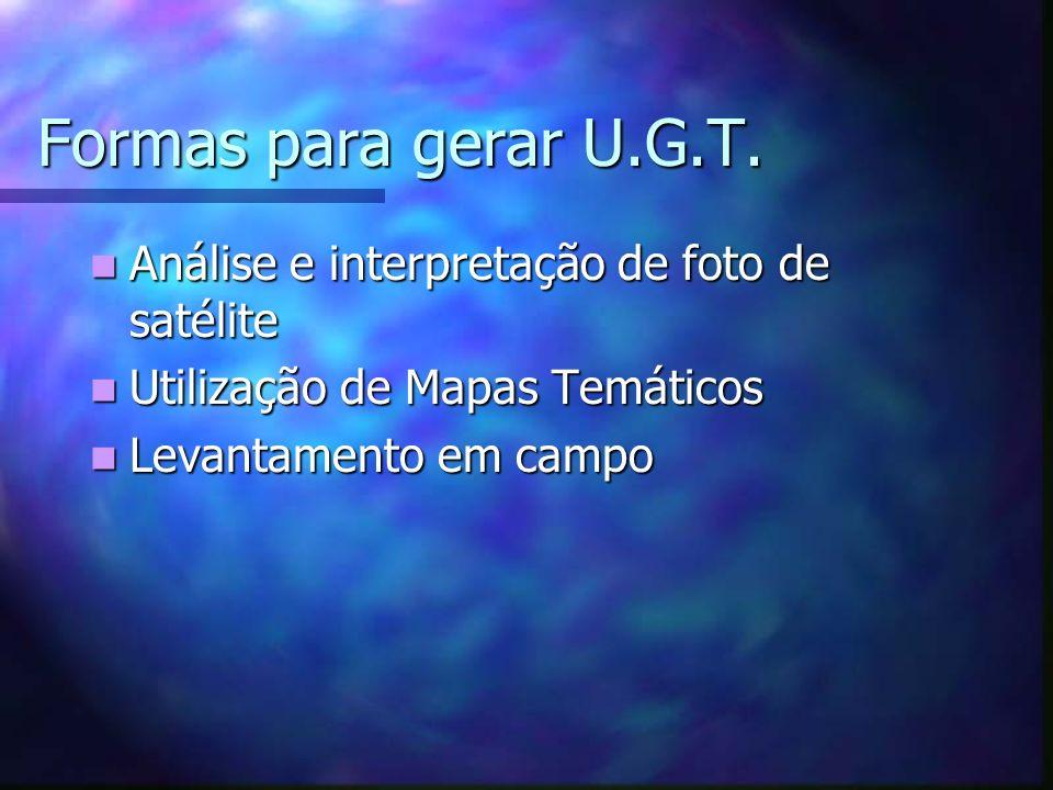 Formas para gerar U.G.T. Análise e interpretação de foto de satélite Análise e interpretação de foto de satélite Utilização de Mapas Temáticos Utiliza
