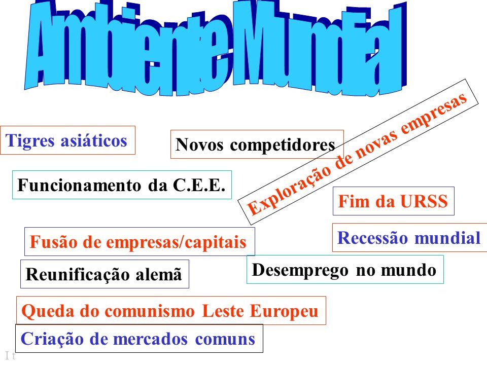 I t Papéis decisórios Entrepreneur =...