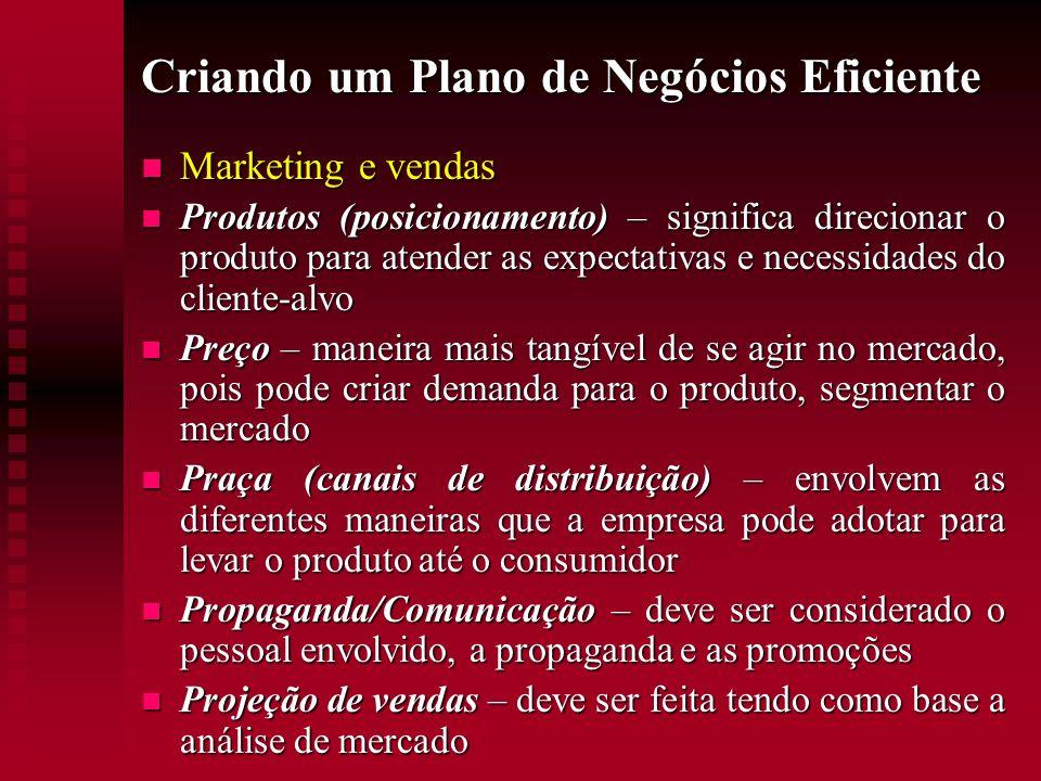 Criando um Plano de Negócios Eficiente Marketing e vendas Marketing e vendas Produtos (posicionamento) – significa direcionar o produto para atender a