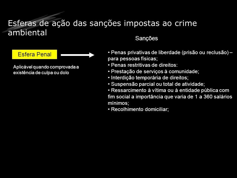 Esferas de ação das sanções impostas ao crime ambiental Esfera Penal Sanções Penas privativas de liberdade (prisão ou reclusão) – para pessoas físicas