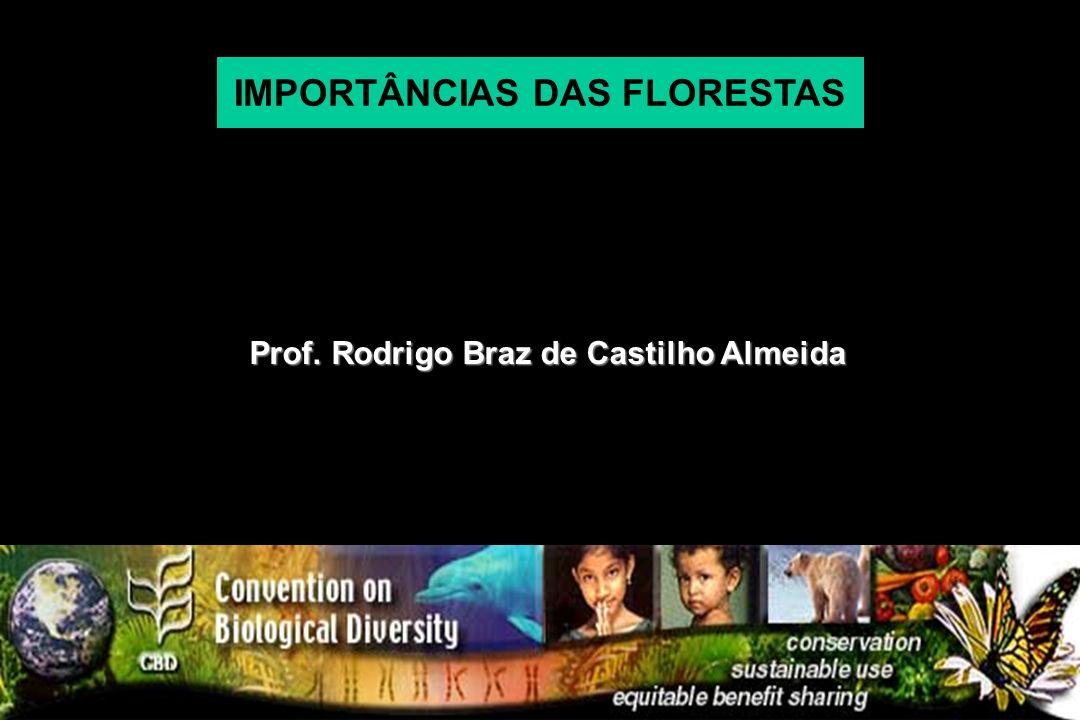 Prof. Rodrigo Braz de Castilho Almeida IMPORTÂNCIAS DAS FLORESTAS