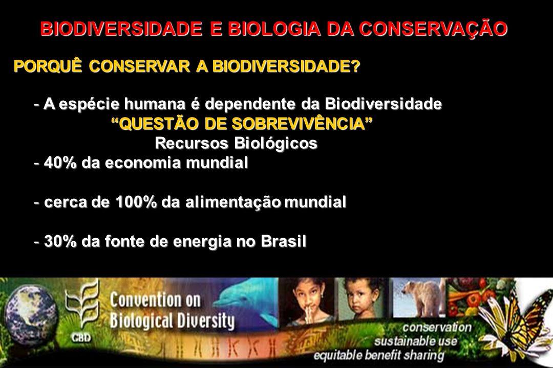 BIODIVERSIDADE E BIOLOGIA DA CONSERVAÇÃO PORQUÊ CONSERVAR A BIODIVERSIDADE? - A espécie humana é dependente da Biodiversidade QUESTÃO DE SOBREVIVÊNCIA