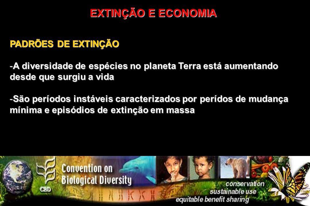 PADRÕES DE EXTINÇÃO -A diversidade de espécies no planeta Terra está aumentando desde que surgiu a vida -São períodos instáveis caracterizados por per