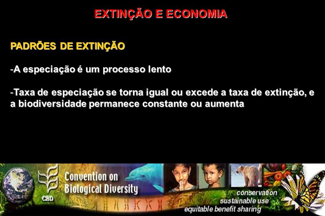 PADRÕES DE EXTINÇÃO -A especiação é um processo lento -Taxa de especiação se torna igual ou excede a taxa de extinção, e a biodiversidade permanece co