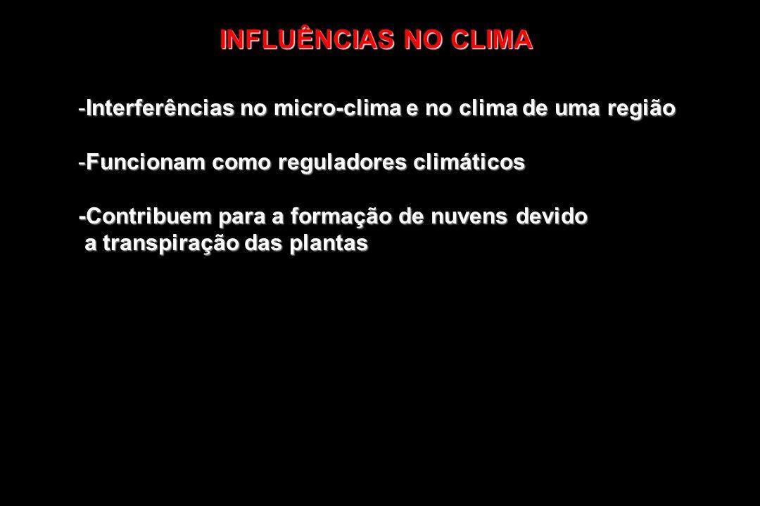 -Interferências no micro-clima e no clima de uma região -Funcionam como reguladores climáticos -Contribuem para a formação de nuvens devido a transpir
