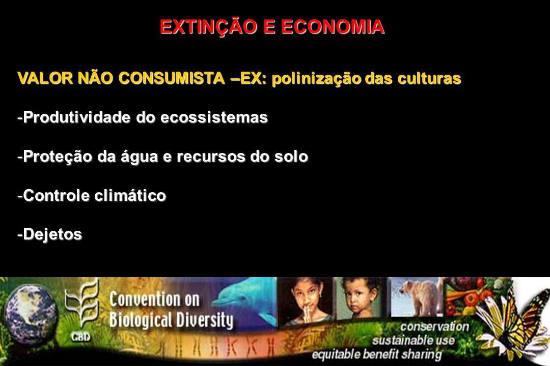 VALOR NÃO CONSUMISTA –EX: polinização das culturas -Produtividade do ecossistemas -Proteção da água e recursos do solo -Controle climático -Dejetos EX