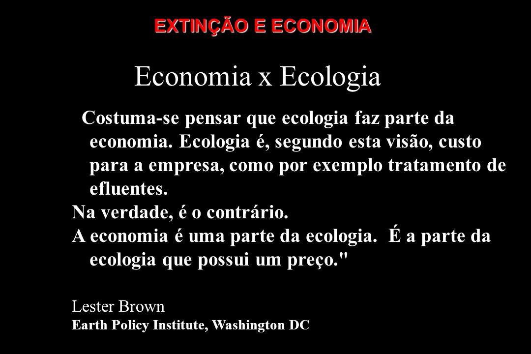 Economia x Ecologia Costuma-se pensar que ecologia faz parte da economia. Ecologia é, segundo esta visão, custo para a empresa, como por exemplo trata