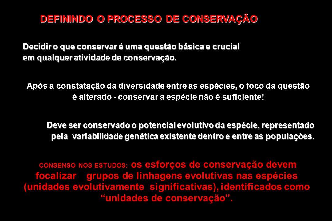 DEFININDO O PROCESSO DE CONSERVAÇÃO Decidir o que conservar é uma questão básica e crucial em qualquer atividade de conservação. Após a constatação da