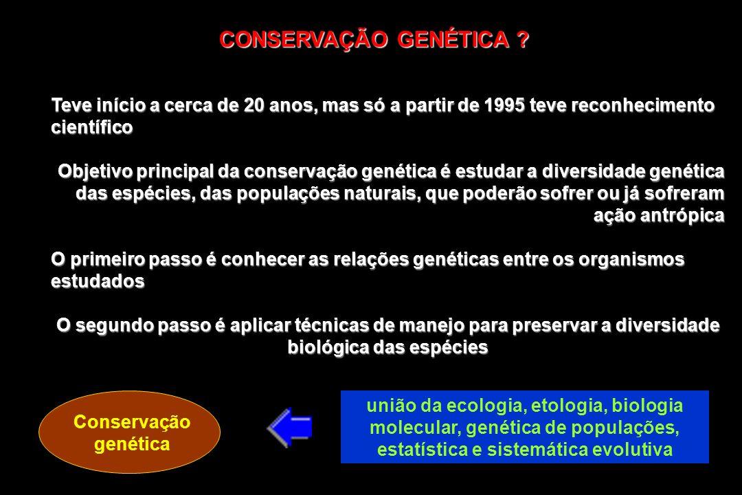 CONSERVAÇÃO GENÉTICA ? Teve início a cerca de 20 anos, mas só a partir de 1995 teve reconhecimento científico Objetivo principal da conservação genéti
