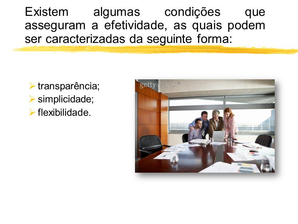 Existem algumas condições que asseguram a efetividade, as quais podem ser caracterizadas da seguinte forma: transparência; simplicidade; flexibilidade