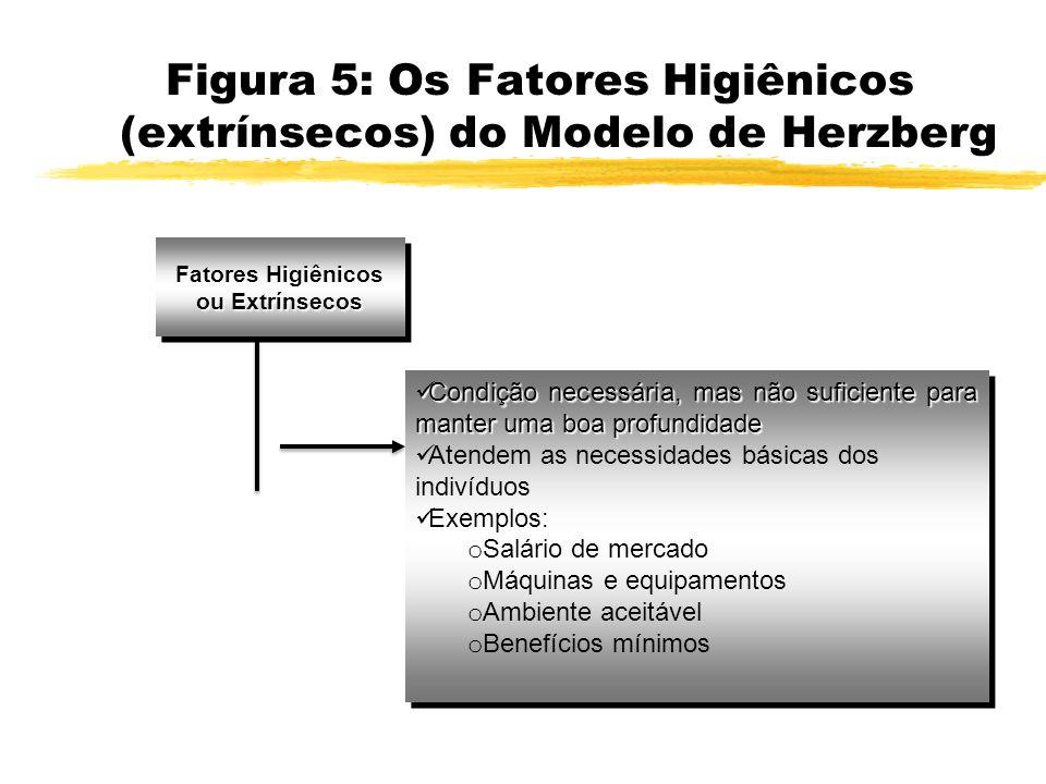 Figura 5: Os Fatores Higiênicos (extrínsecos) do Modelo de Herzberg Fatores Higiênicos ou Extrínsecos Condição necessária, mas não suficiente para man