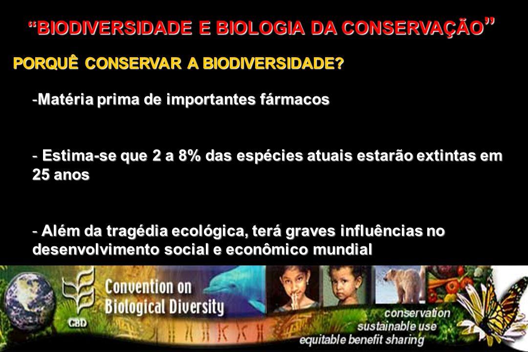 BIODIVERSIDADE E BIOLOGIA DA CONSERVAÇÃO BIODIVERSIDADE E BIOLOGIA DA CONSERVAÇÃO PORQUÊ CONSERVAR A BIODIVERSIDADE? -Matéria prima de importantes fár