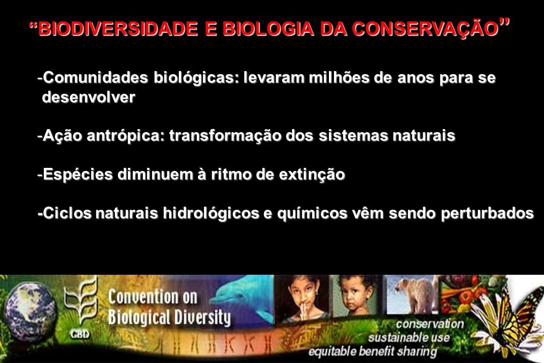 -Comunidades biológicas: levaram milhões de anos para se desenvolver desenvolver -Ação antrópica: transformação dos sistemas naturais -Espécies diminu
