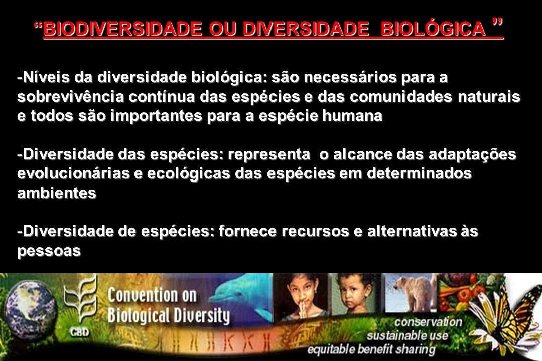 -Níveis da diversidade biológica: são necessários para a sobrevivência contínua das espécies e das comunidades naturais e todos são importantes para a