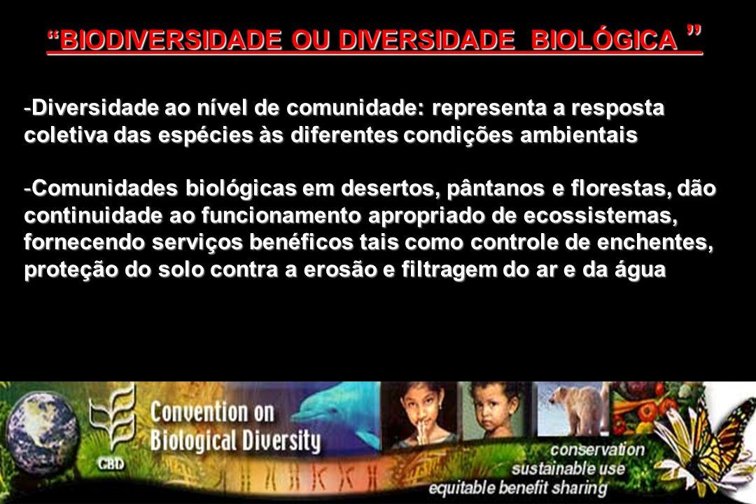 -Diversidade ao nível de comunidade: representa a resposta coletiva das espécies às diferentes condições ambientais -Comunidades biológicas em deserto