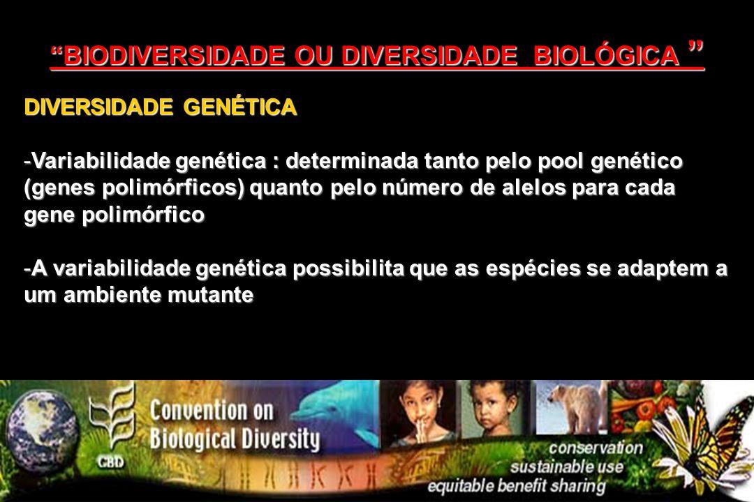 DIVERSIDADE GENÉTICA -Variabilidade genética : determinada tanto pelo pool genético (genes polimórficos) quanto pelo número de alelos para cada gene p