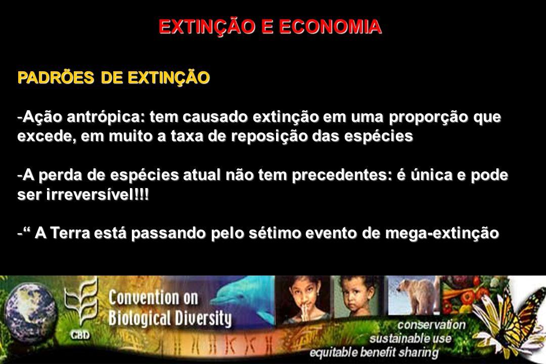 PADRÕES DE EXTINÇÃO -Ação antrópica: tem causado extinção em uma proporção que excede, em muito a taxa de reposição das espécies -A perda de espécies