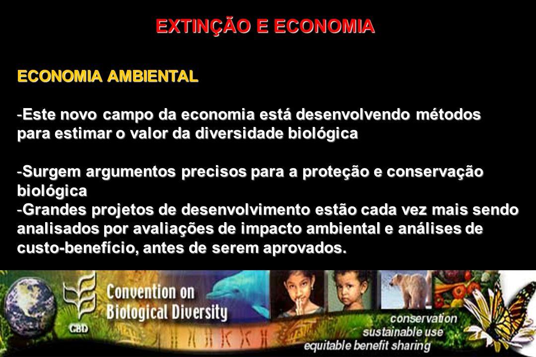 ECONOMIA AMBIENTAL -Este novo campo da economia está desenvolvendo métodos para estimar o valor da diversidade biológica -Surgem argumentos precisos p