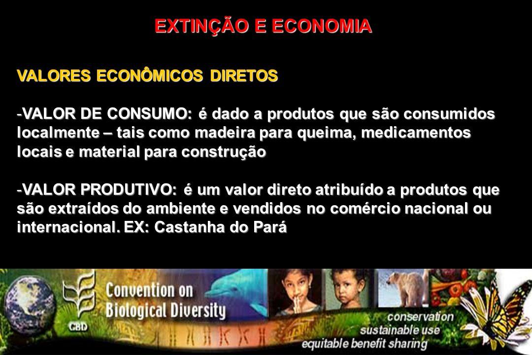 VALORES ECONÔMICOS DIRETOS -VALOR DE CONSUMO: é dado a produtos que são consumidos localmente – tais como madeira para queima, medicamentos locais e m