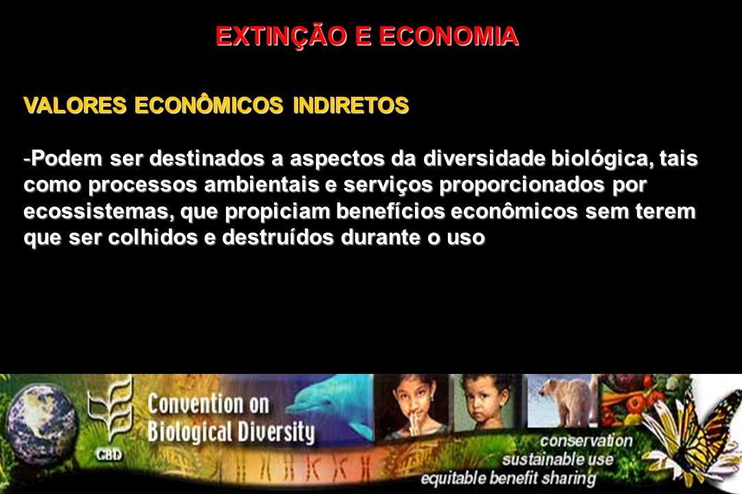 VALORES ECONÔMICOS INDIRETOS -Podem ser destinados a aspectos da diversidade biológica, tais como processos ambientais e serviços proporcionados por e