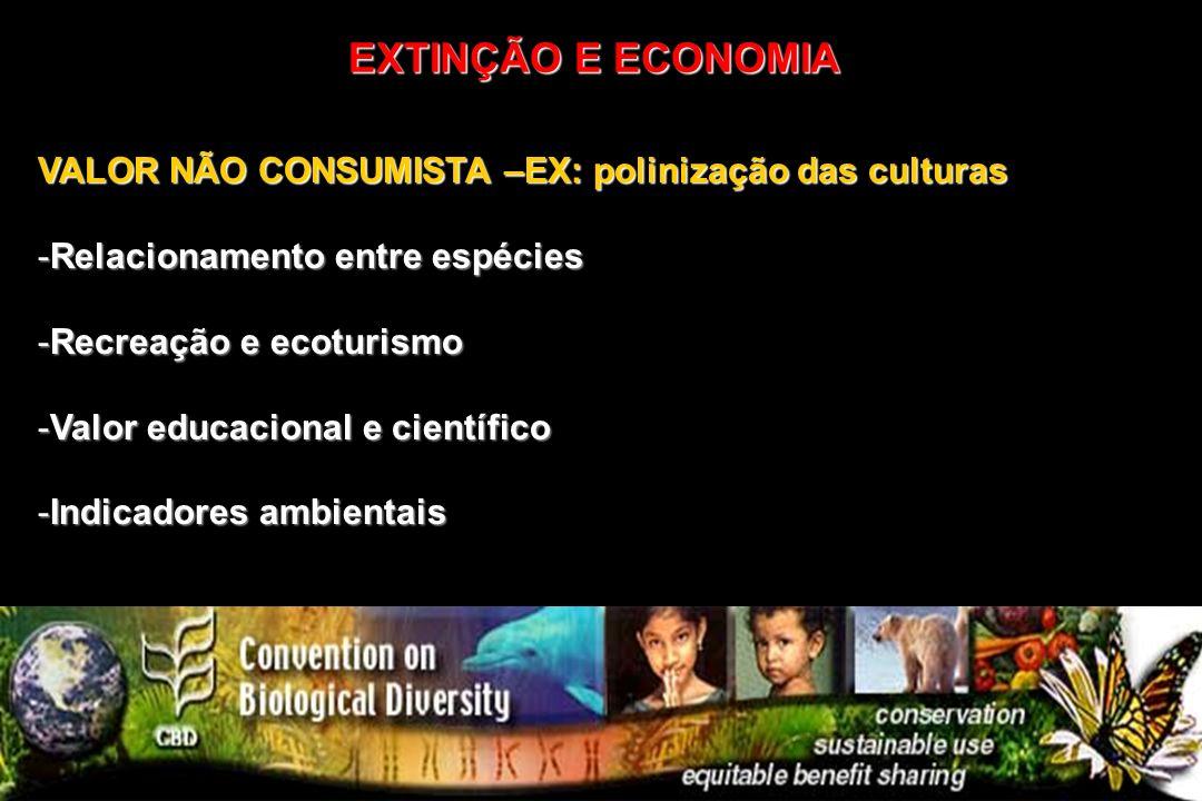 VALOR NÃO CONSUMISTA –EX: polinização das culturas -Relacionamento entre espécies -Recreação e ecoturismo -Valor educacional e científico -Indicadores